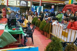 fortnite feria stock torrelavega